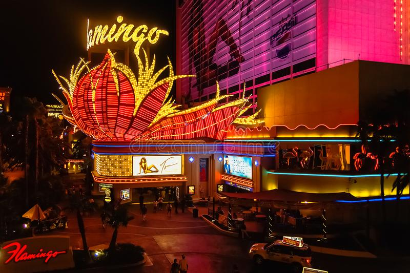 Flaminga kasyno nocą obrazy stock