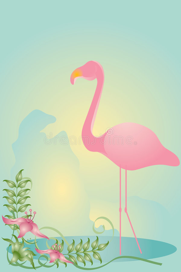 Flamingo vector illustratie