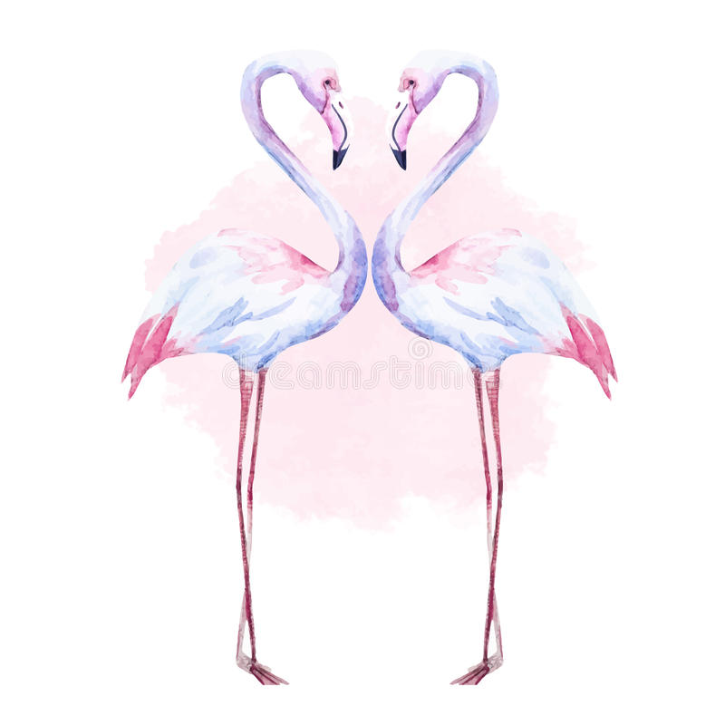 Flamingo agradável da aquarela