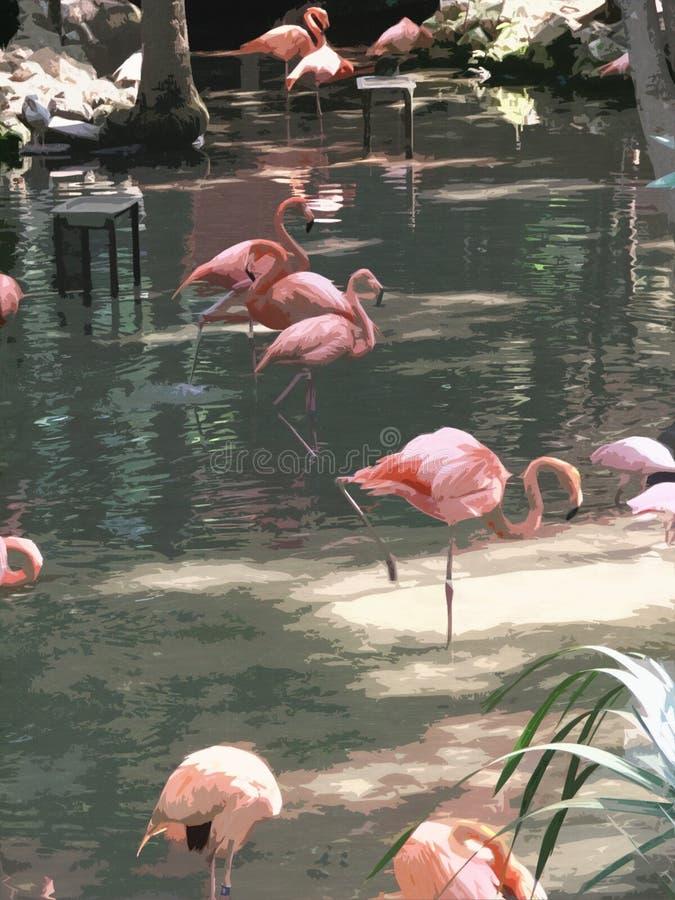 flamingo akwarele ilustracji