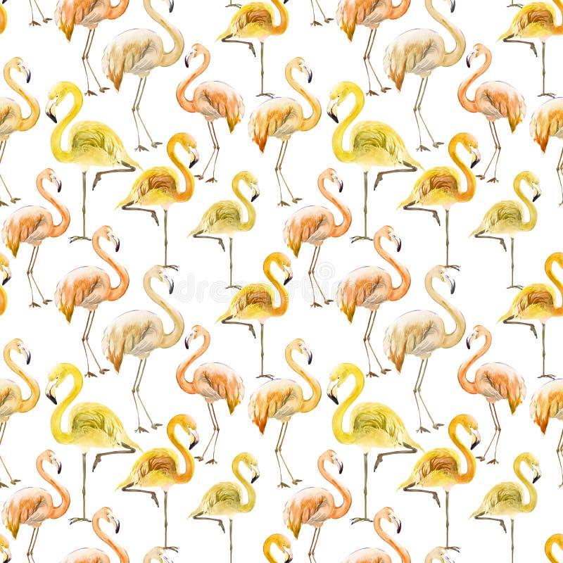 Flamingo amarelo e alaranjado bonito no fundo branco Teste padrão sem emenda exótico Pintura da aguarela ilustração stock