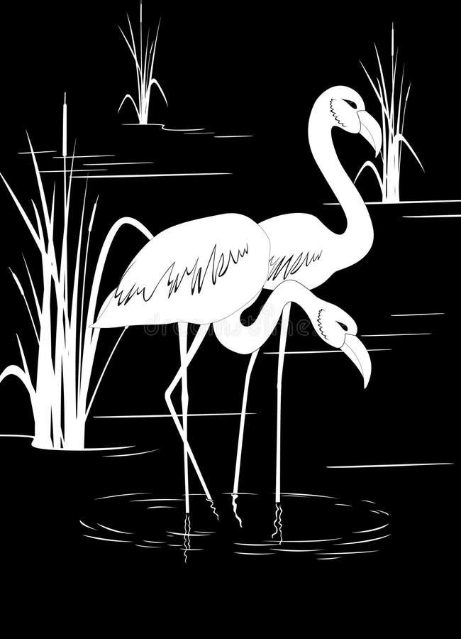 Flamingo auf See lizenzfreie abbildung