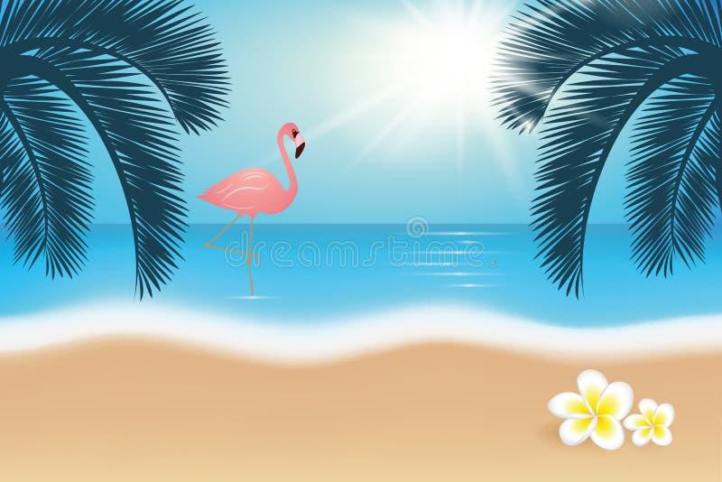 Flamingo auf tropischem Strand des Paradieses mit Palmen und Frangipaniblume stock abbildung