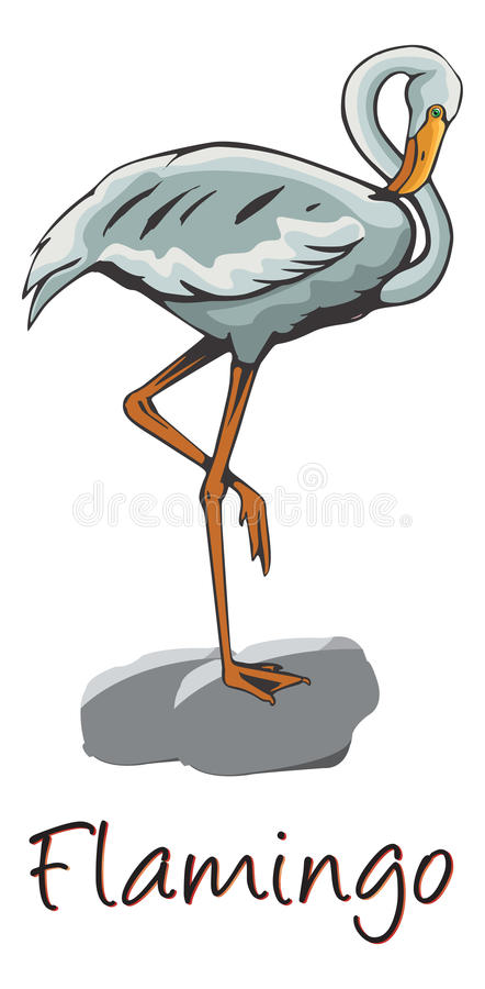 Flamingo, Color Illustration Royalty Free Stock Photo