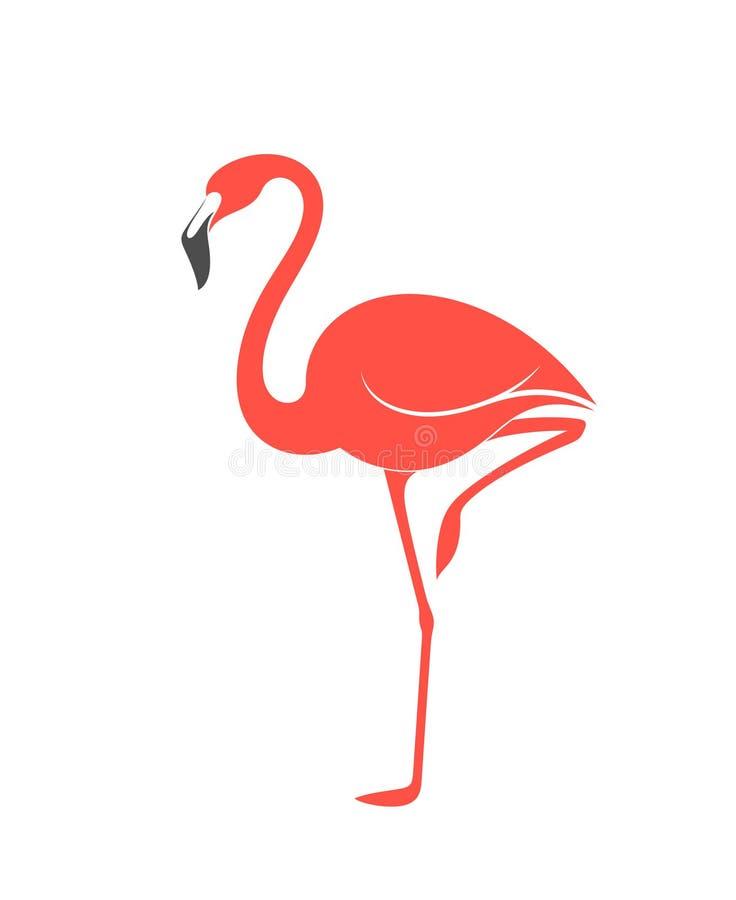 Flamingo cor-de-rosa ilustração stock