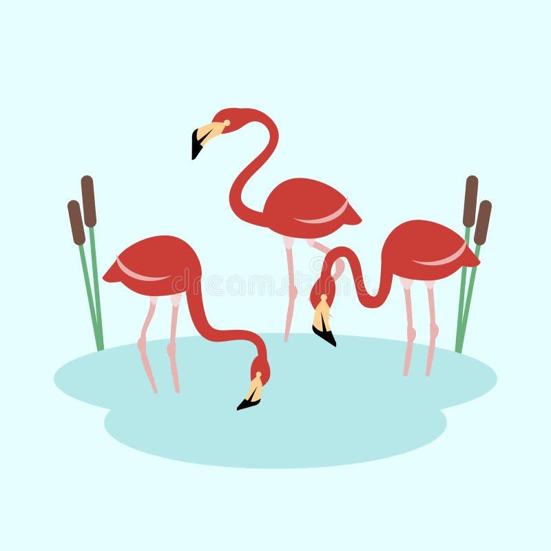 Flamingo drei am Seevektor stock abbildung