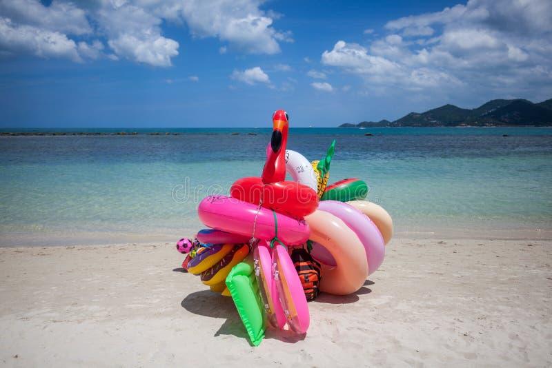 Flamingo e anéis de espuma de flutuação na praia em Tailândia fotografia de stock royalty free