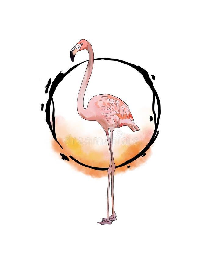 flamingo ilustração royalty free