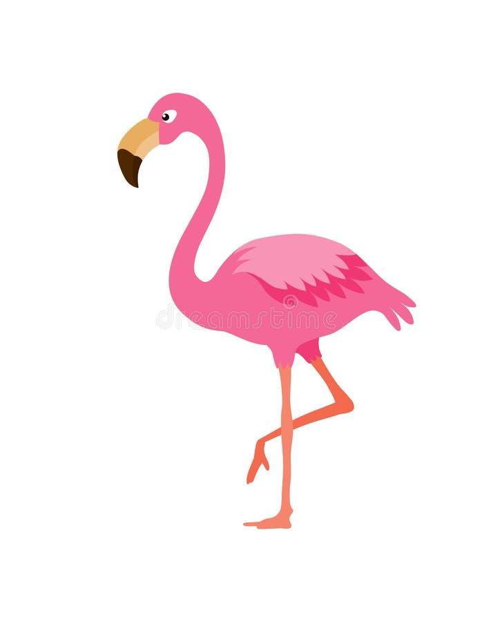Flamingo. Illustration isolated on white background