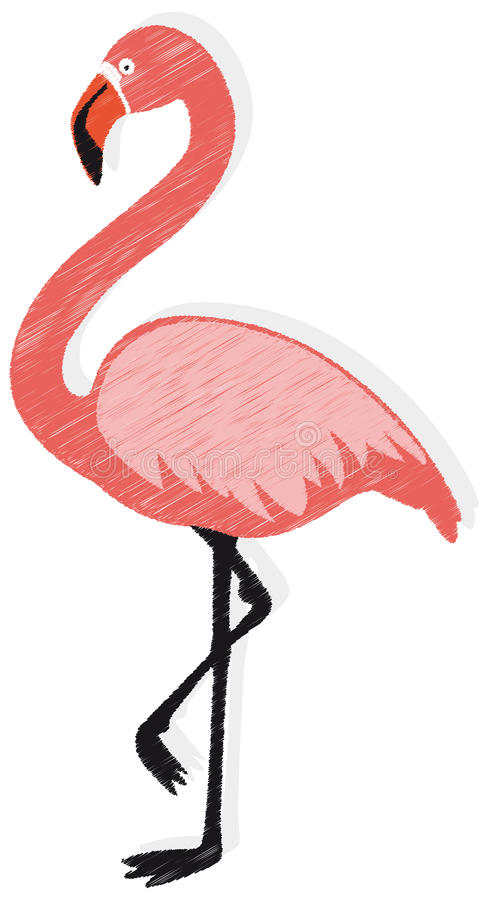 Flamingo vector. Vector illustration of a pink flamingo isolated on white background stock illustration