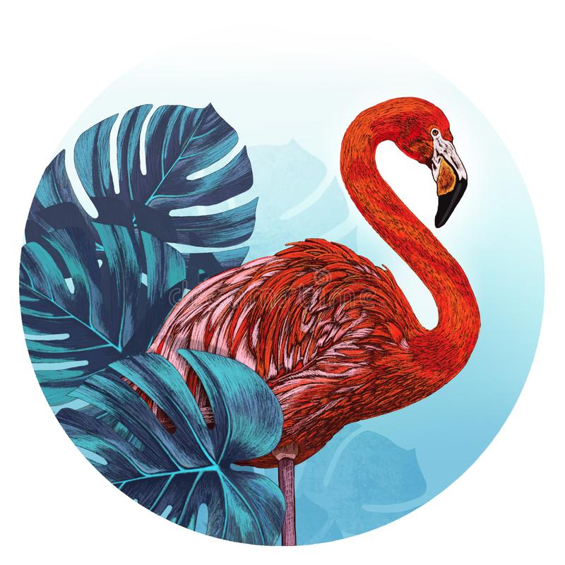 Flamingo in front of tropical leaves. vector illustration