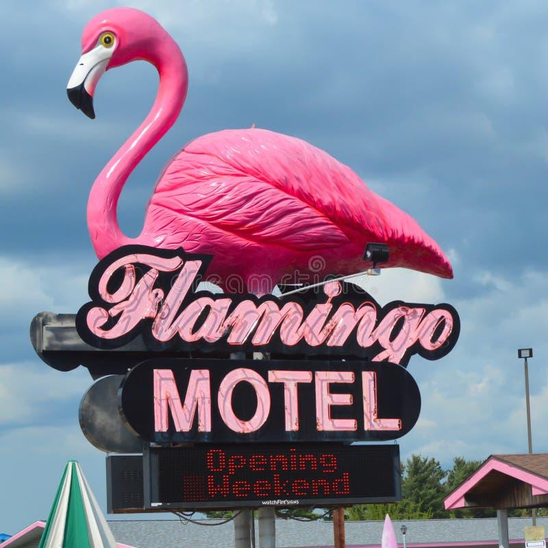 Flamingo Motel Sign - Wisconsin Dells stockfotografie