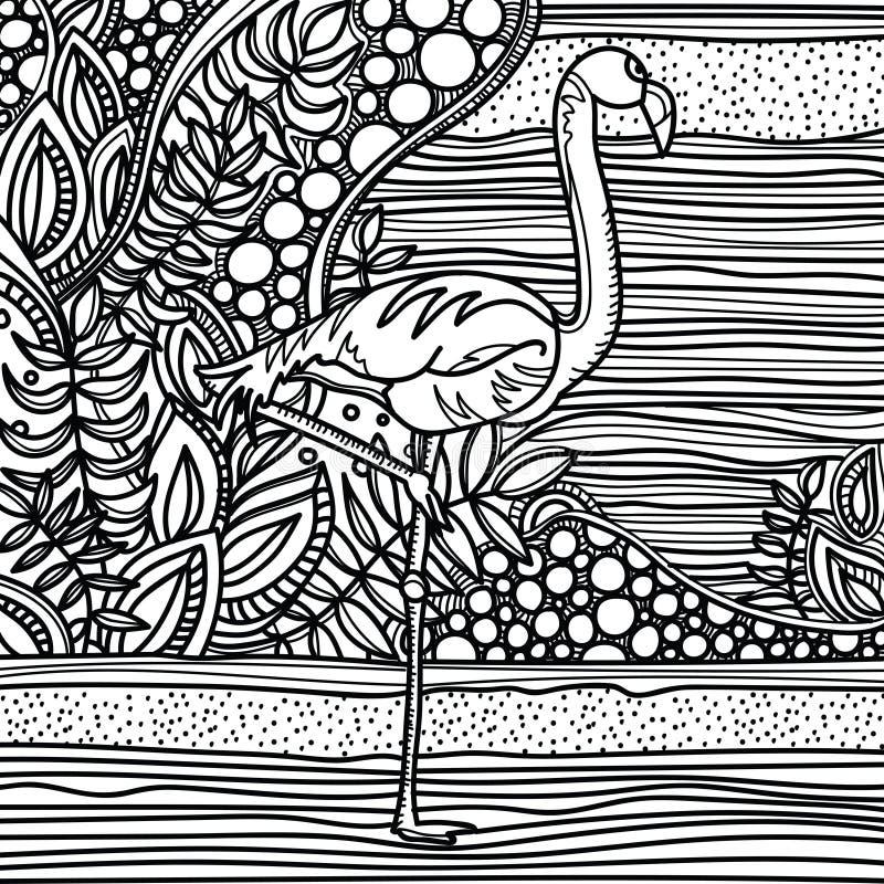 Flamingo no jardim da fantasia Página para o livro da cor Esboço tirado mão, garatuja, zentangle ilustração do vetor