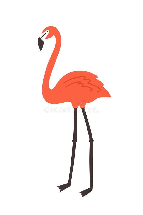 Flamingo op witte achtergrond wordt ge?soleerd die E r wild vector illustratie