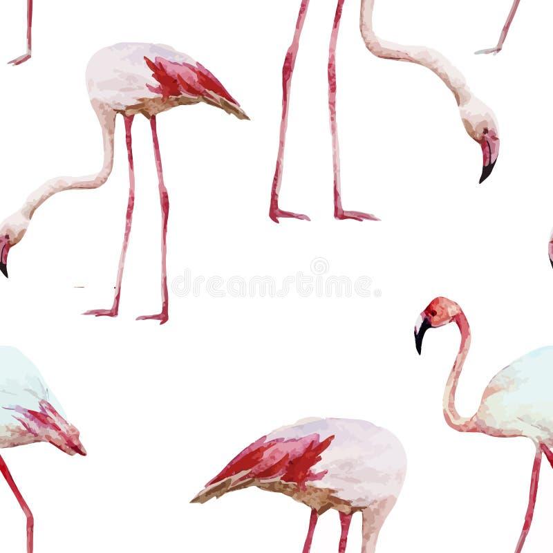 Flamingo pattern vector illustration