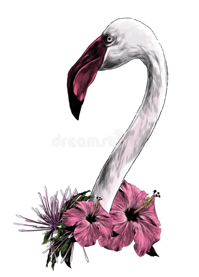 Flamingo principal do pássaro com pescoço longo lateralmente no perfil ilustração do vetor