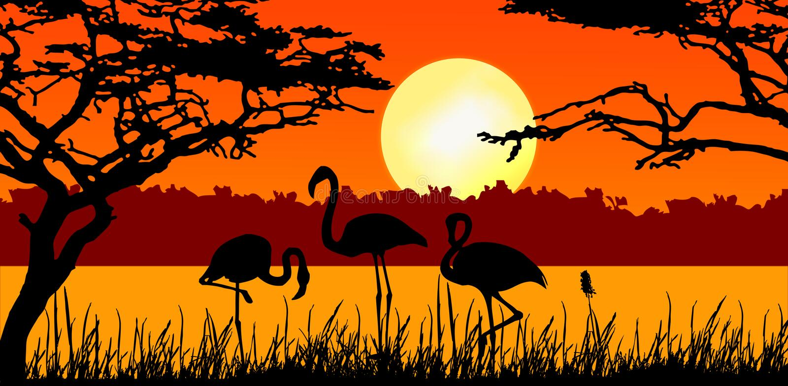 Flamingo's in zonsondergang stock illustratie