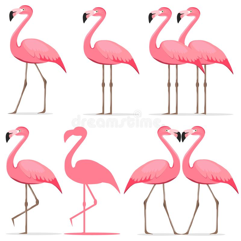 Flamingo, a set of pink flamingos royalty free illustration