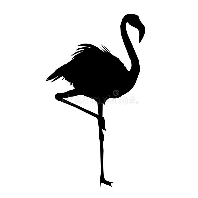 Vector file of flamingo. Flamingo silhouette , vector file of bird, illustration stock illustration