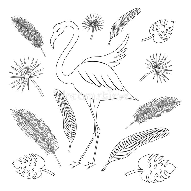 Flamingo and tropical leaves: coconut palm, palm fan, banana texture. Black outline. Summer set. Stylized vector royalty free illustration