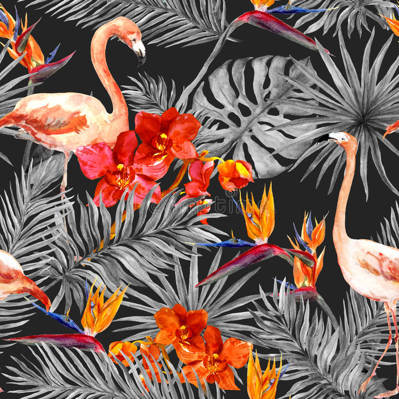 Flamingo, tropical leaves, exotic flowers. Seamless pattern, black background. Watercolor royalty free illustration