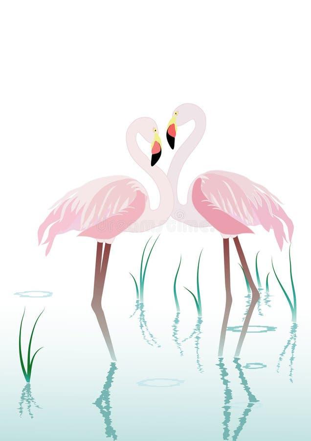 flamingo två royaltyfri illustrationer
