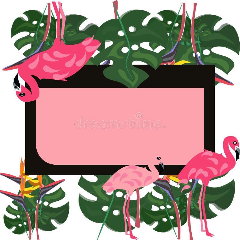 Flamingo und rosa Hibiscusblume Tropischer Sommer Palmblätter, Anlagen, Rechteckrahmen text Origamidschungel Fr?hling lizenzfreie abbildung