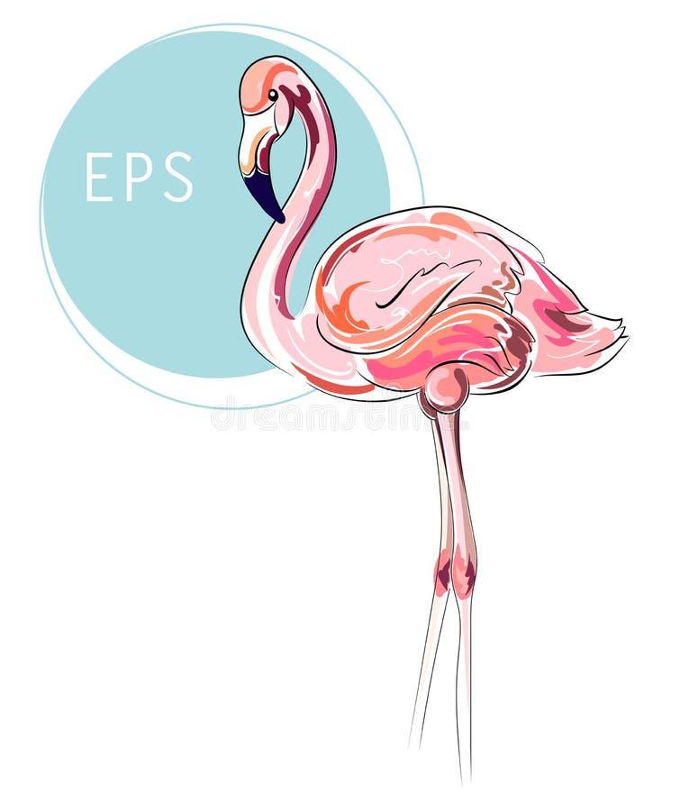 Flamingo vector illustration. Pink modern bird isolated on white background stock image