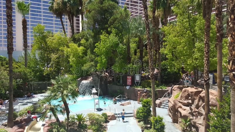 Flamingo Vegas pool stock photography
