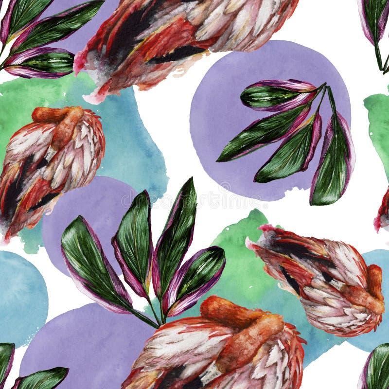 Flamingo vermelho exótico em uns animais selvagens isolados Grupo da ilustração do fundo da aquarela Teste padrão sem emenda do f fotos de stock