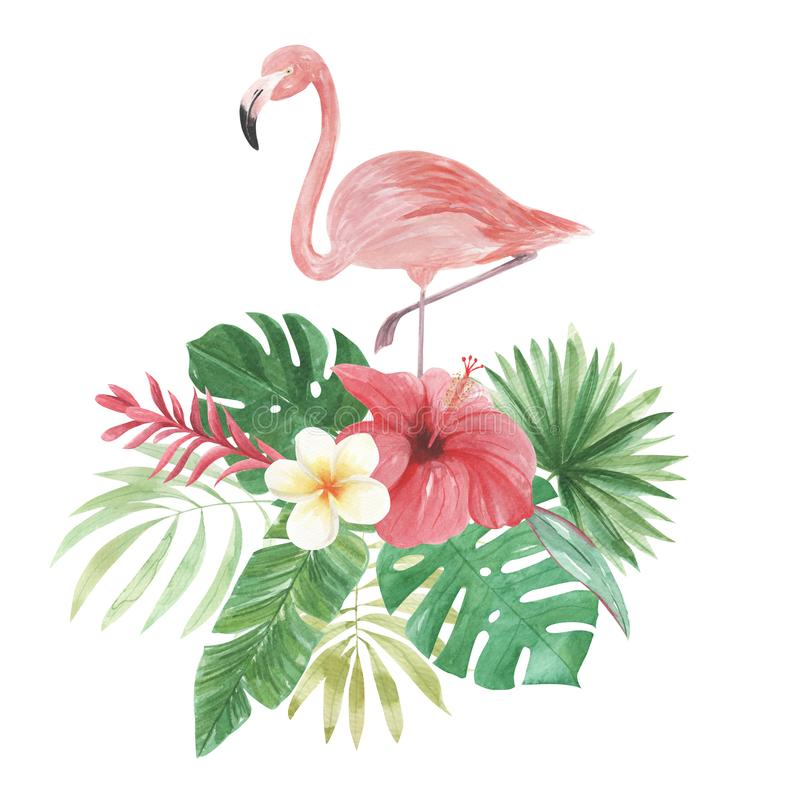 Flamingo Watercolor Floral Flowers Leaves Plumeria Tropical Hibiscus vector illustration