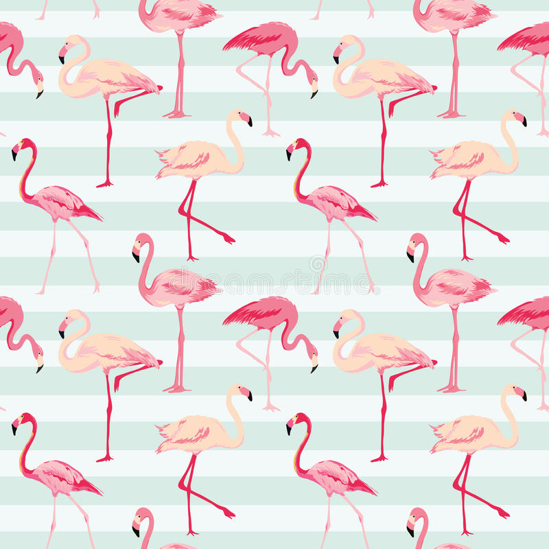 Flamingofågelbakgrund royaltyfri illustrationer