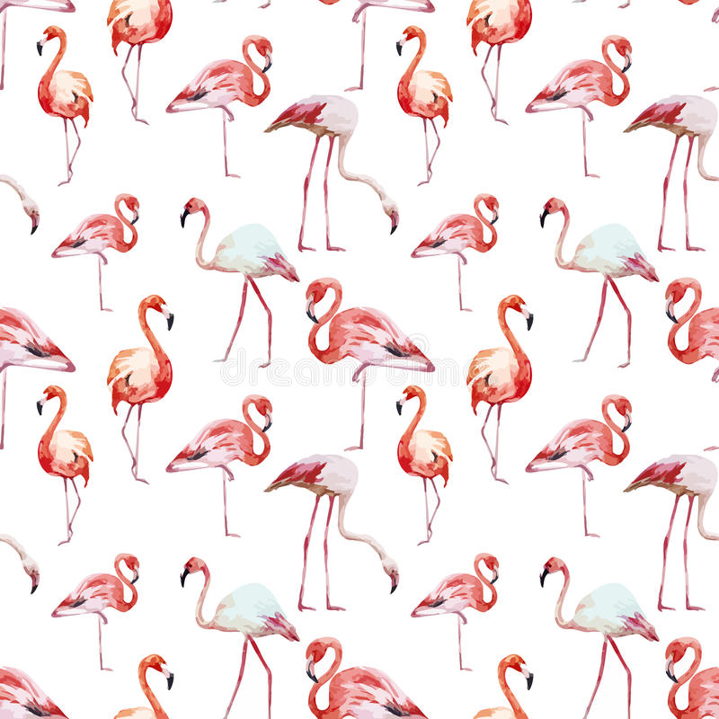 Flamingomodell vektor illustrationer