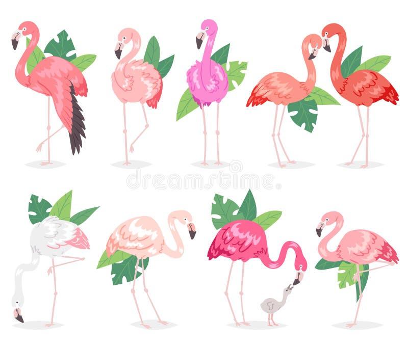 Flamingos cor-de-rosa tropicais do vetor do flamingo e pássaro exótico com grupo da ilustração das folhas de palmeira de passarin ilustração stock