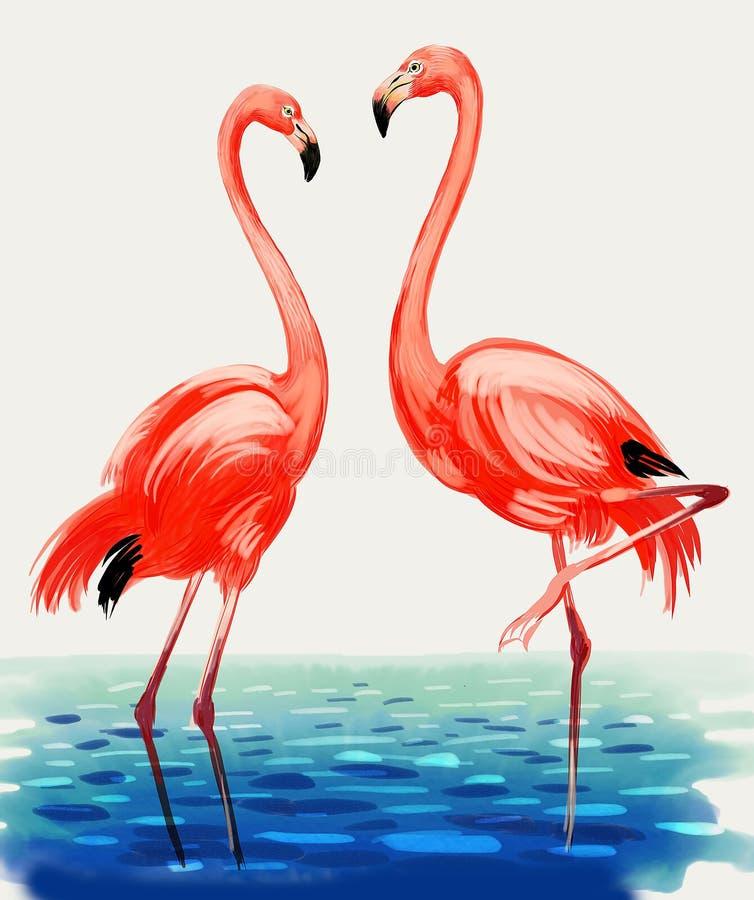 flamingos rosa ilustração do vetor