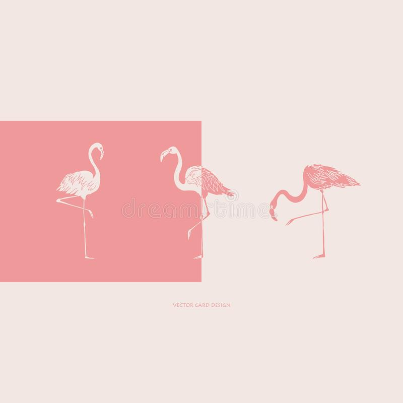 Flamingos silhouettes. Vector card. Cover design. Vector illustration. royalty free illustration