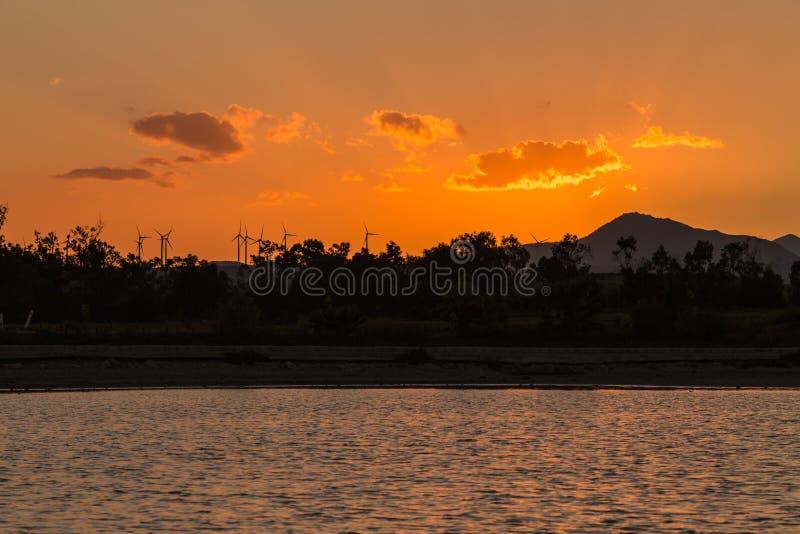 Flamingos wade in Salt Water Lake of Larnaca Cyprus as sunset stock image