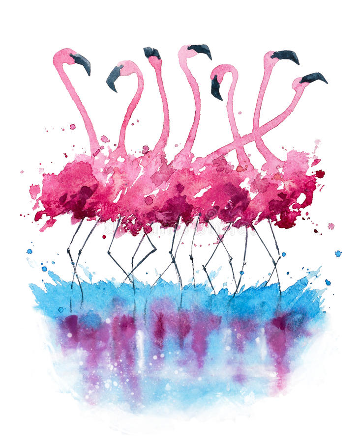 Flamingos watercolor painting stock illustration