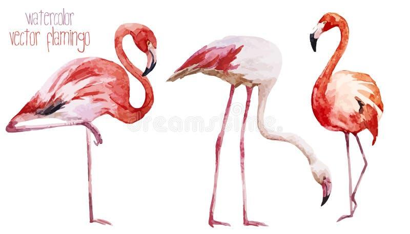 Flamingouppsättning stock illustrationer