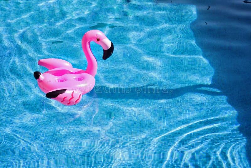 Flamingovlotter in de pool stock foto
