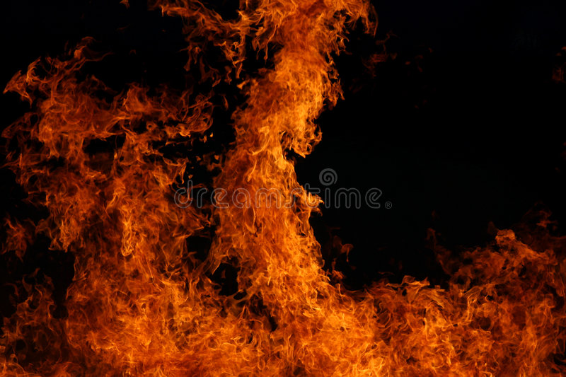 flamm red arkivfoton