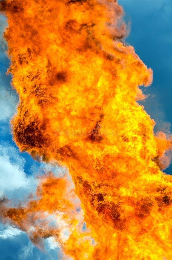 Flamma av brand royaltyfri fotografi