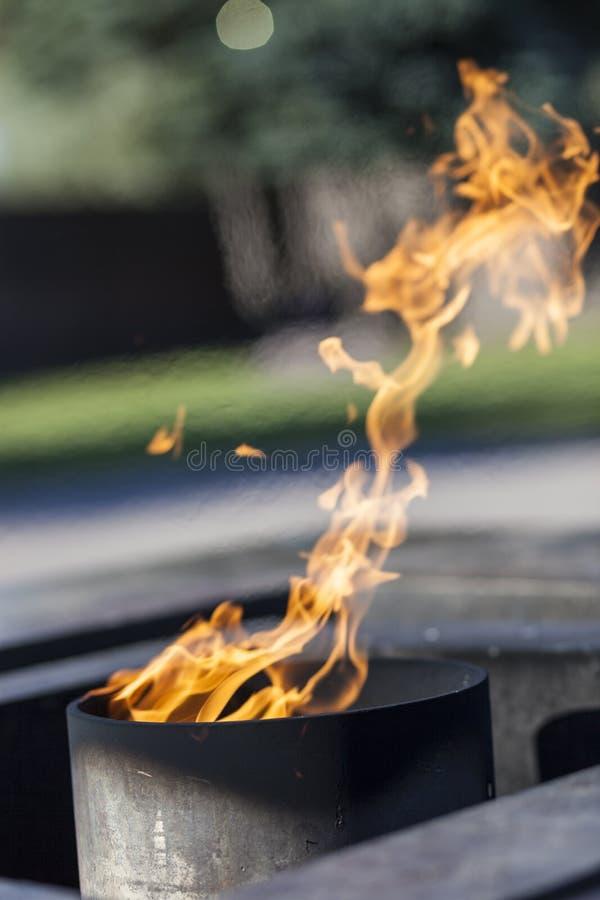 Flamma med en blured bakgrund royaltyfri foto