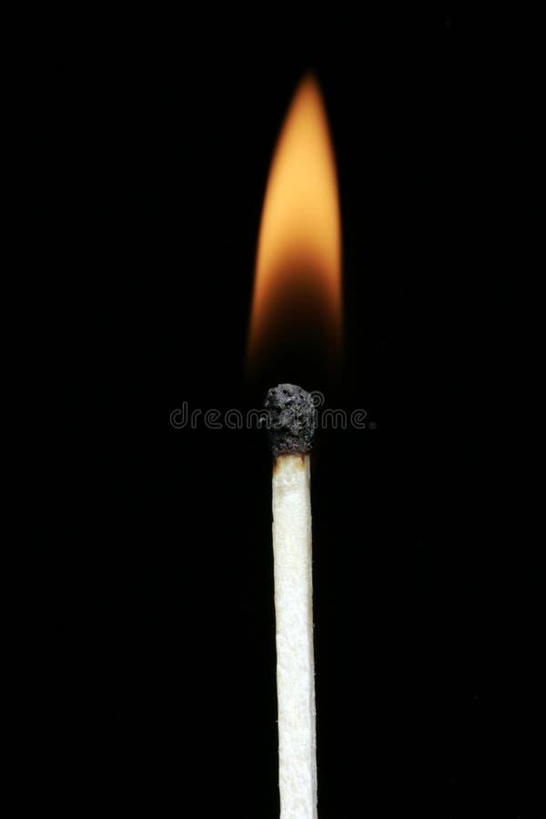 flammamatchstick royaltyfria bilder