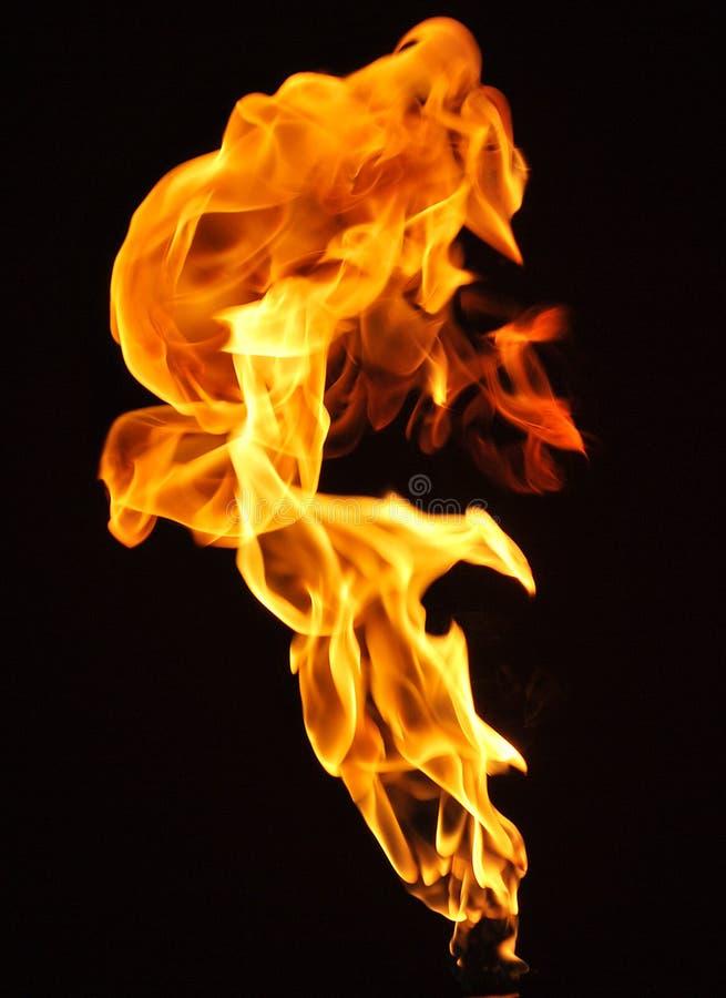 Flamme lizenzfreies stockbild