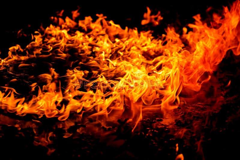 Flamme brûlante d'incendie images libres de droits