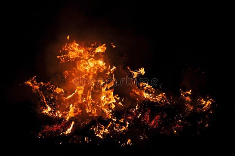 Flamme d'incendie sur le noir photo stock