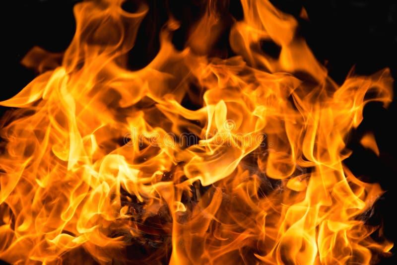 Flamme du feu de flamme sur le fond noir photos libres de droits