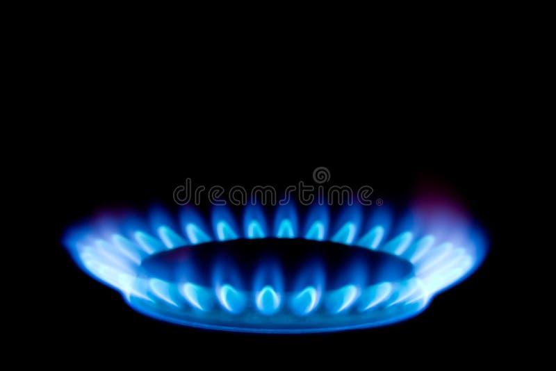 Flamme du gaz photos libres de droits