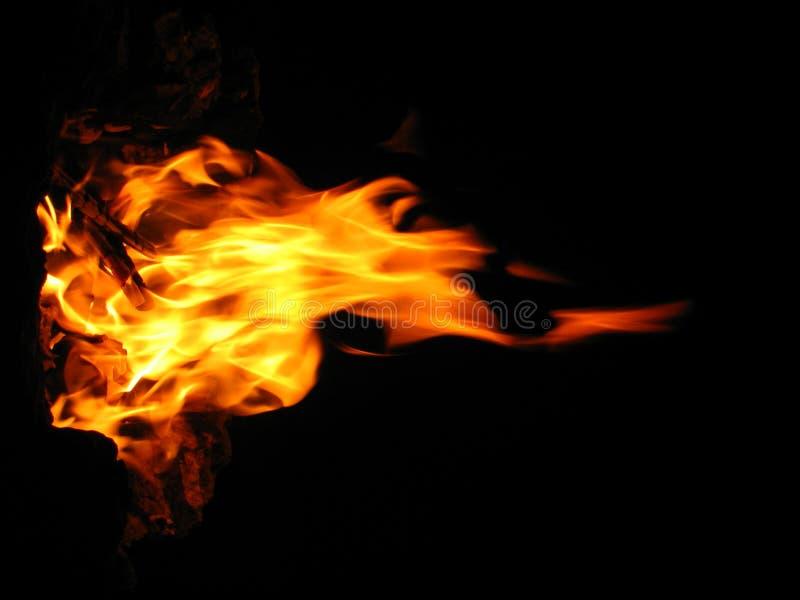 Flamme lizenzfreie stockfotos
